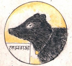 dharapancha5502 (Medium)